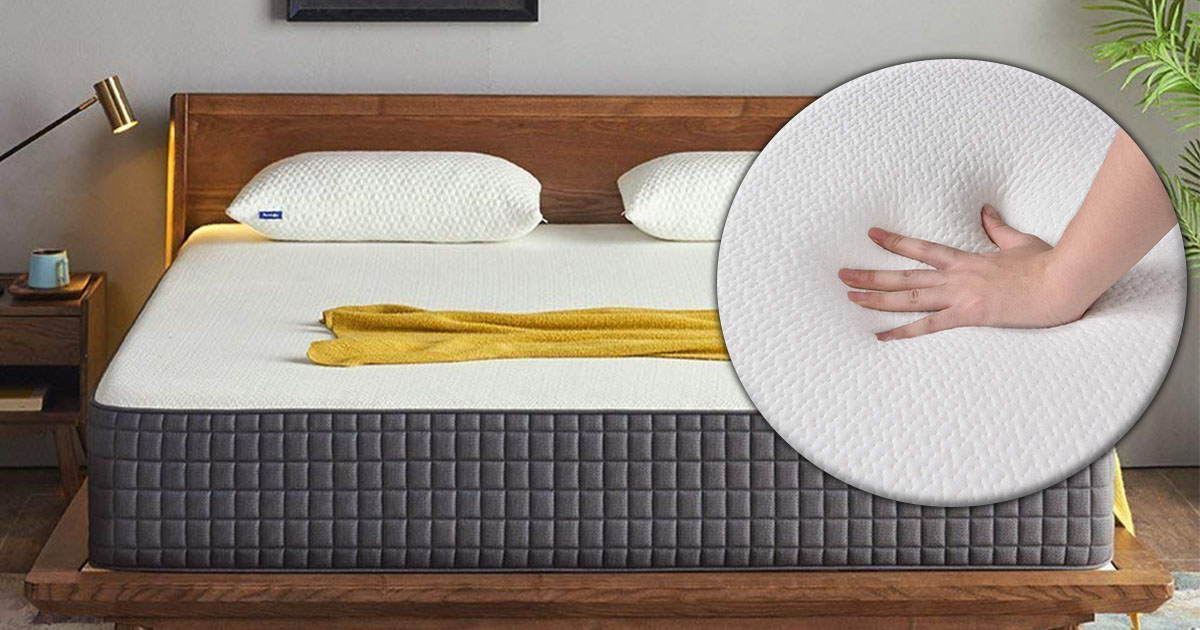 Best Mattress for Back Pain image
