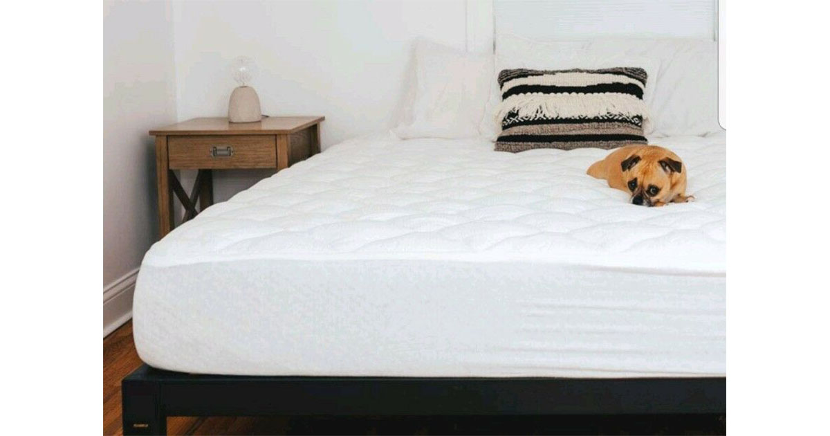 eLuxurySupply Tencel Mattress Pad with Fitted Skirt King image